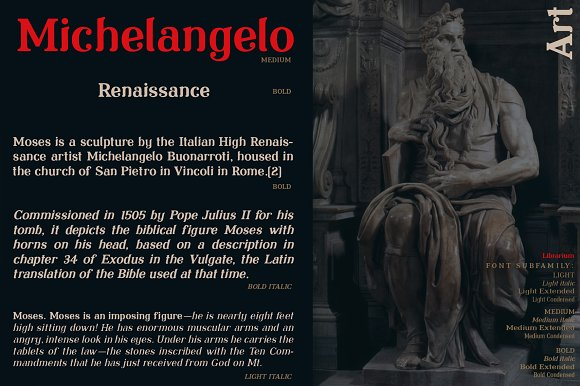 Librarium - Serif Font Family in Serif Fonts - product preview 11