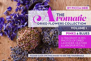 The dried flowers collection vol 1
