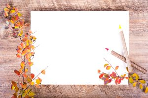 Colorful autumn leaves on diary