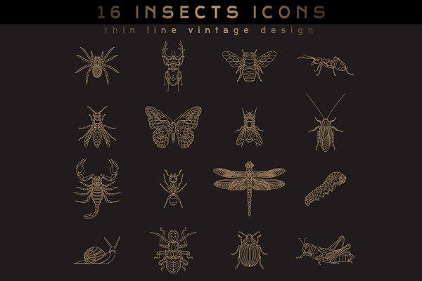 16 Insect Icons