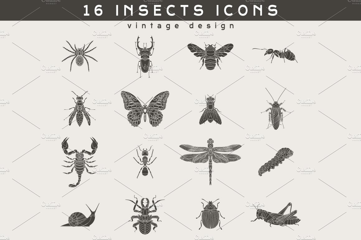 16 Insect Logos ~ Icons ~ Creative Market