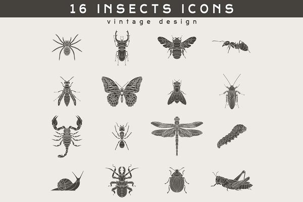 16 Insect Logos