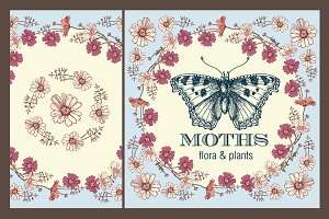 Set. Butterflies. Flowers. Card.