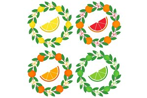 Citrus Wreath Set