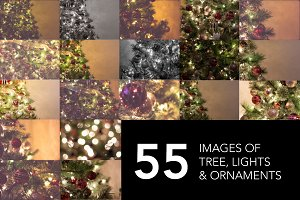 Christmas Tree Photo Bundle