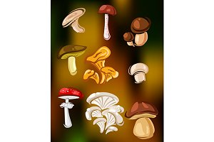 Colorful set of vector mushrooms and