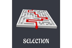 Labyrinth with the word Selection be