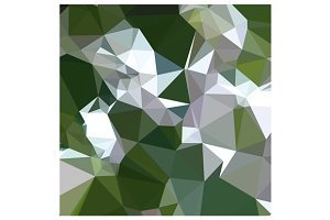 Castleton Green Abstract Low Polygon