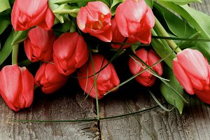 Heap of Red Tulips