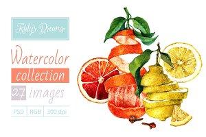 Watercolor set-Lemons and oranges