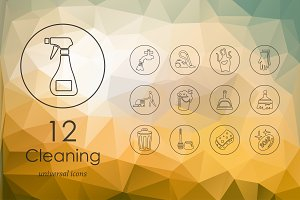 12 cleaning icons