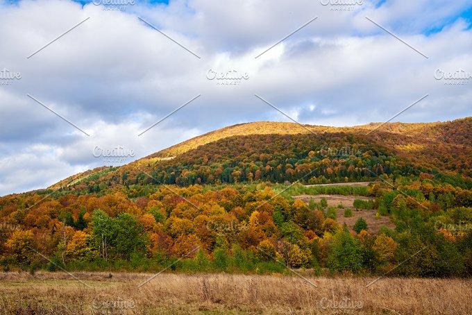Mountain colorful landscape. Alps. - Nature