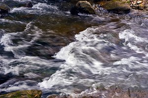 Mountain stream river with rapids