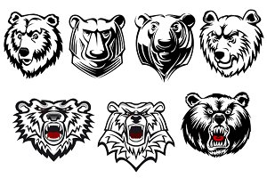 Bear mascots with different expressi