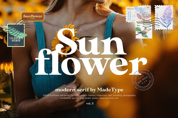 Modern Font Bundle | 95% Off in Display Fonts - product preview 1