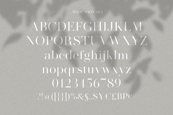 Modern Font Bundle | 95% Off in Display Fonts - product preview 22
