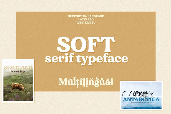 Modern Font Bundle | 95% Off in Display Fonts - product preview 26