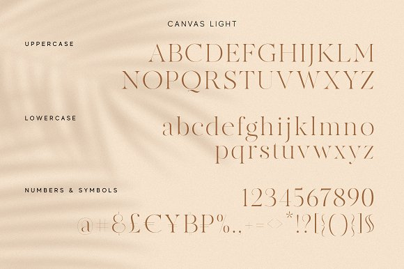 Modern Font Bundle | 95% Off in Display Fonts - product preview 44