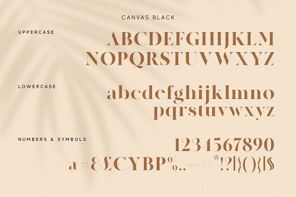 Modern Font Bundle | 95% Off in Display Fonts - product preview 46
