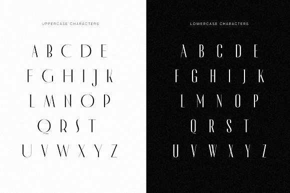 Modern Font Bundle | 95% Off in Display Fonts - product preview 89