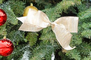 Golden Bow on Xmas Tree