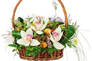 Bouquet from orchids in in wicker ba