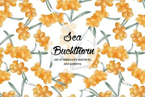 Watercolor sea buckthorn collection