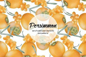 Watercolor persimmon collection