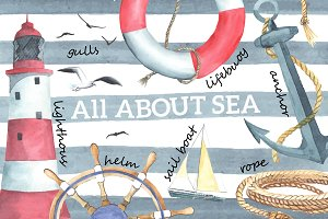 Nautical elements. Watercolor