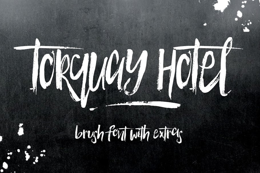 Torquay Hotel Brush Font in Display Fonts - product preview 8