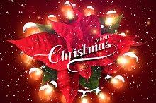 Merry Christmas. Holiday Vector