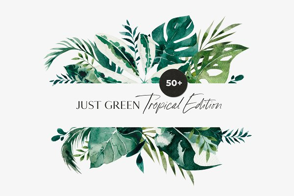 Tropical Leaves Greenery Foliage Pre Designed Photoshop Graphics Creative Market Shop tropical leaves circle logo business card created by 1201am. tropical leaves greenery foliage