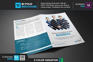 Bi-Fold Brochure 13