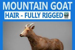 Mountain Goat Rigged