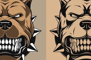 Vector illustration Angry pitbull