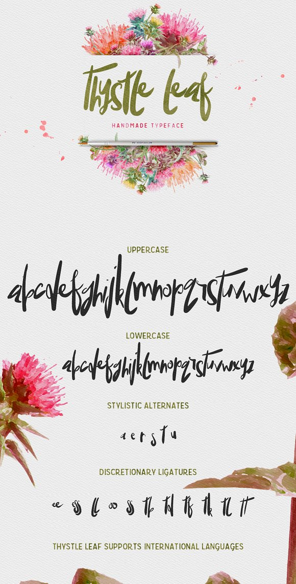 Thystle Leaf Typeface -20% OFF
