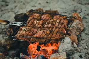 Grilled Meat on Sea Beach Picnic