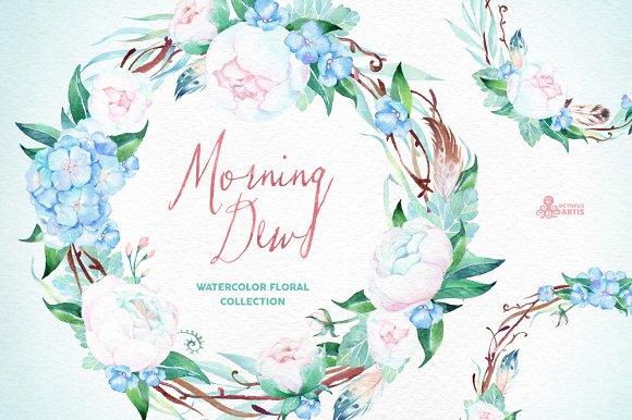 Morning Dew. Floral Collection - Illustrations