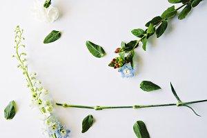 Floral Deconstruction VI