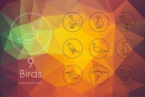 9 birds icons