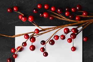 Vertical Red Berries and Stationary