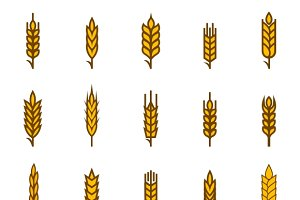 Ears of wheat bread symbols