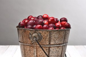 Bucket of Cranberries