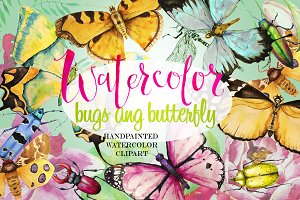 watercolor bugs and butterfly
