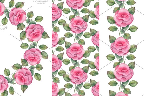 Roses. Set - Illustrations