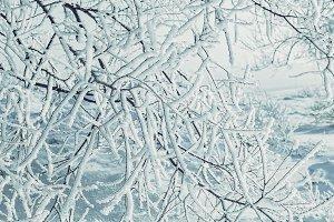 Snowy Christmas tale.