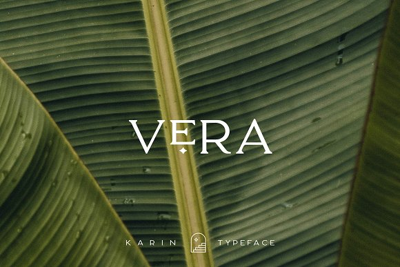 Elegant Karin - Stylish Typeface in Serif Fonts - product preview 27