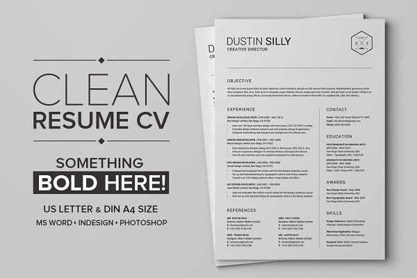 Clean Resume CV - Silly