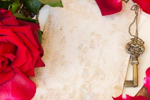 vintage background with red rose