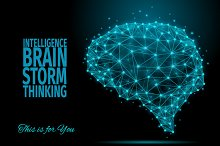 Intelligence/ Brain / Thinking